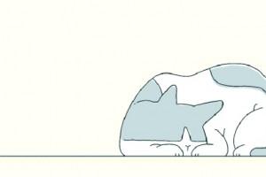 @杭州人灭鼠总动员已开始这个秋冬想要远离老鼠的烦恼请你一起试试这几招……
