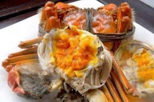 秋天吃螃蟹好处多但营养师提醒螃蟹的这4个部位一口也不要吃